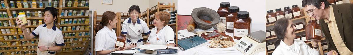 Introductory events and Q&A sessions for studying acupuncture, Chinese herbal medicine or nutritional therapy